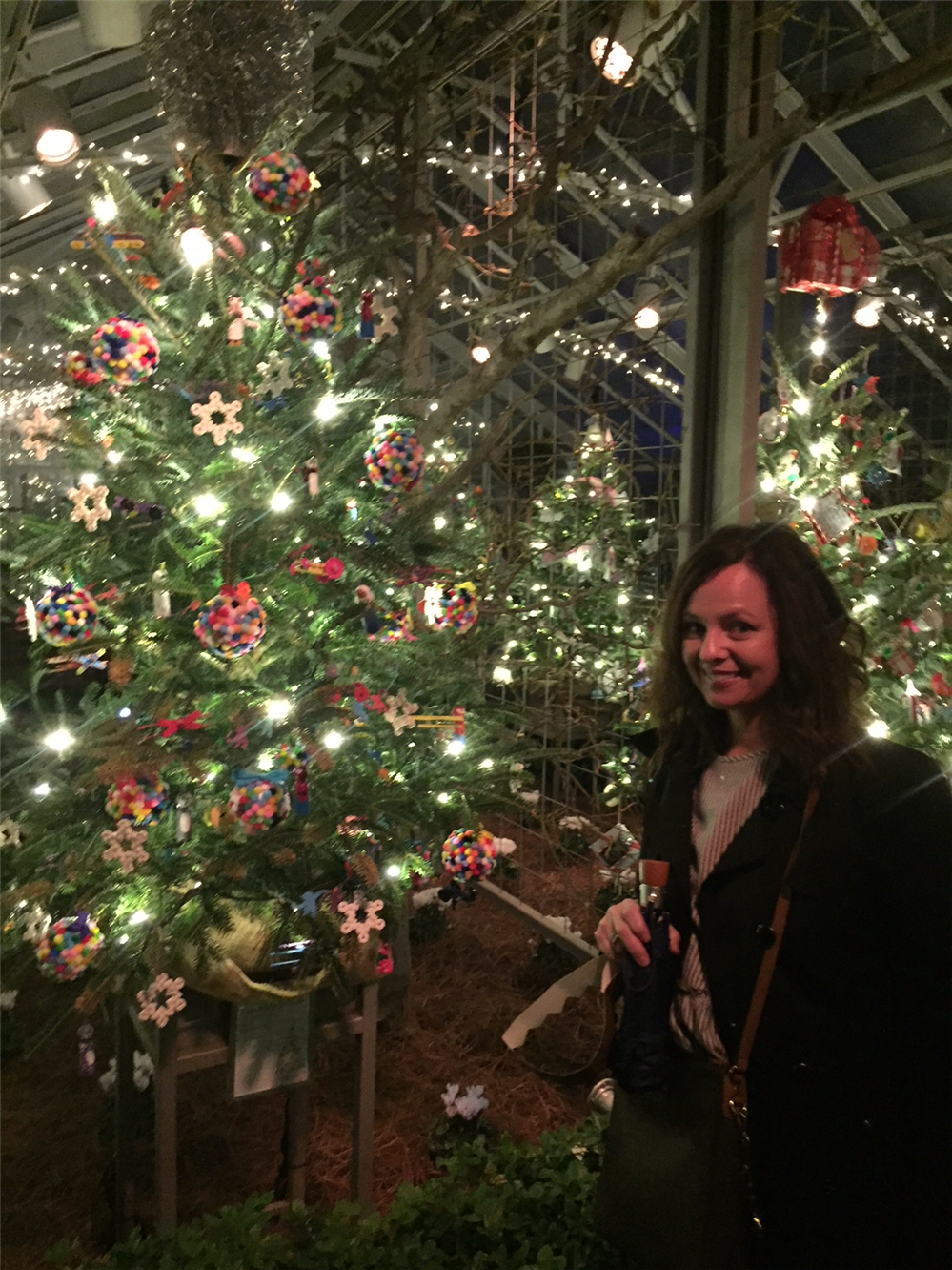 Students' Tree Attracts Spectators at Longwood Gardens